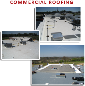 Cardinal Roofing Images